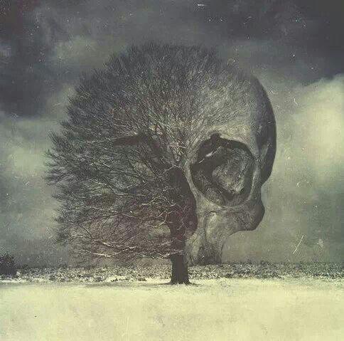 a78c8d518e32ef1b1977a075dc2a415c--skull-art-dark-art