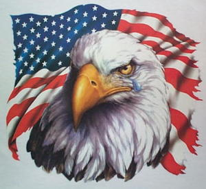 american_flag_&_crying_bald_eagle_patriotic